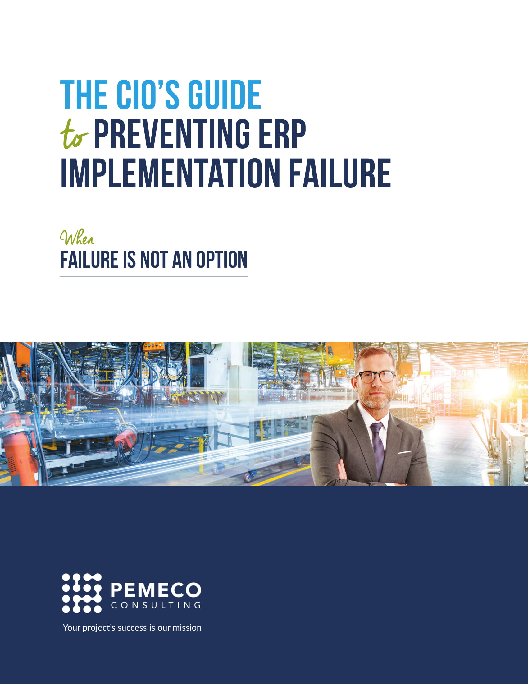 The CIO's Guide to prevent ERP implementation Failure